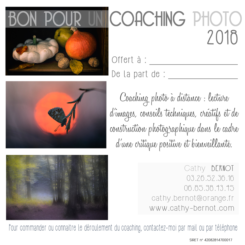 bon-coaching_mini